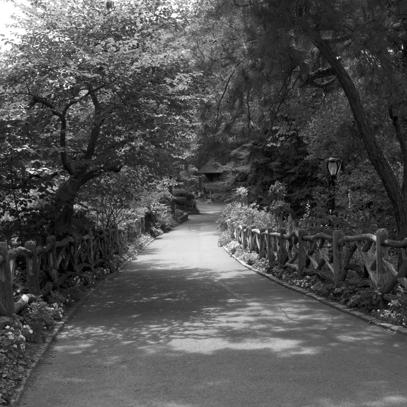 rustic walk.jpg