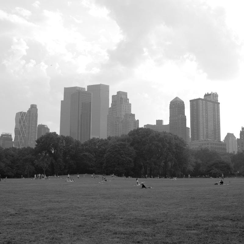sheep's meadow.jpg