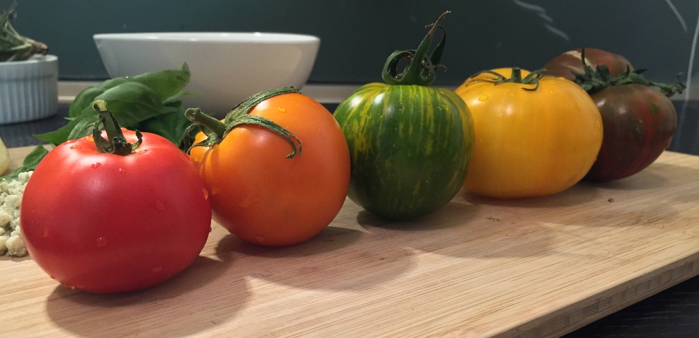 Look at these gorgeous tomatoes!