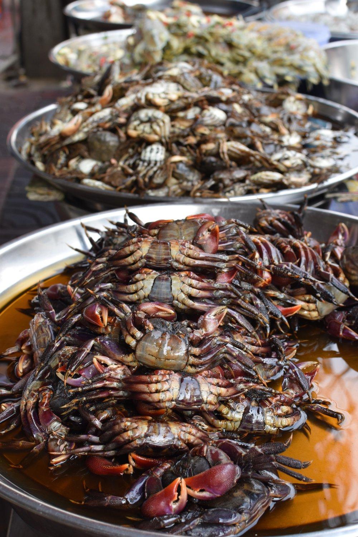 food small 2.jpg