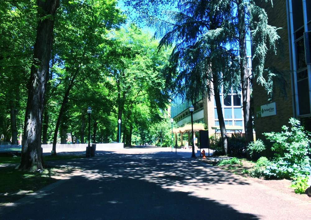 Walking through the more University-like areas of Portland State University.