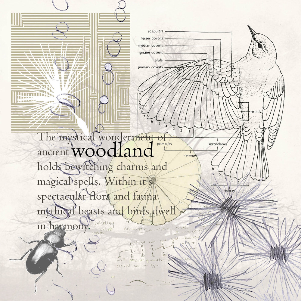 Mood board for design inspiration for Woodland collection.