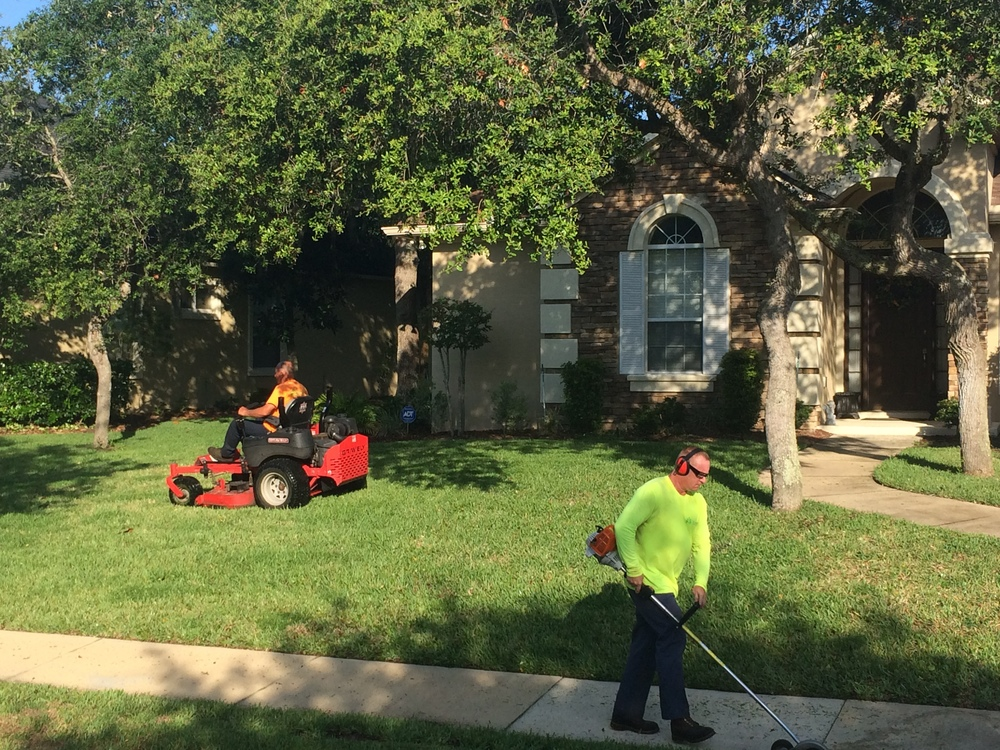 Home true cut lawn care for Lawn and garden maintenance services