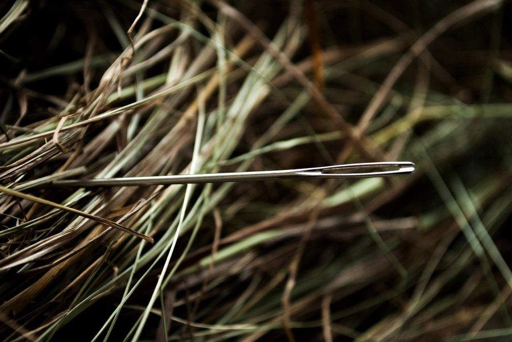 needle in a haystack.jpg