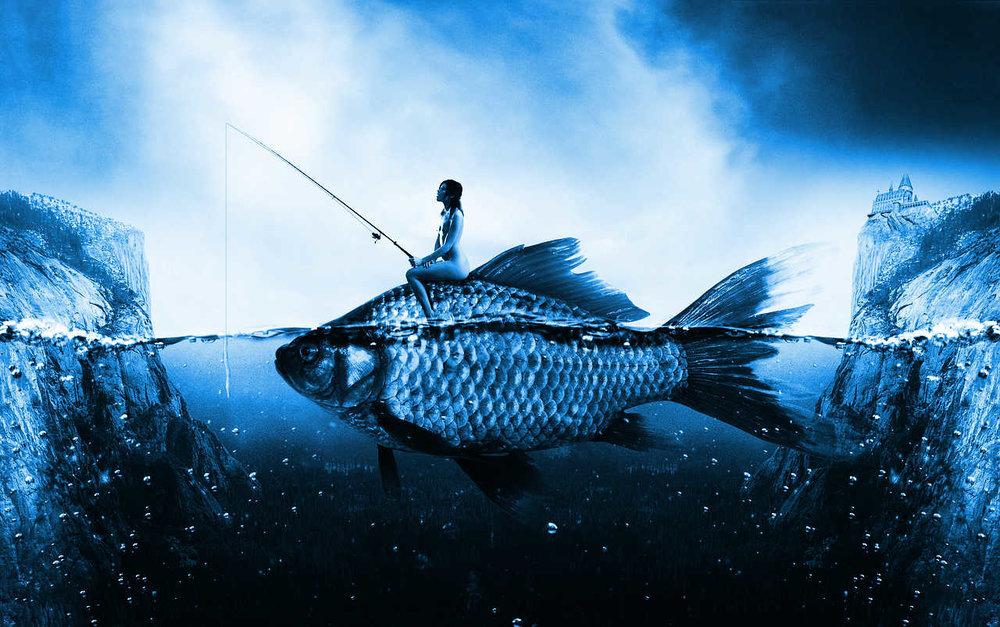 big blue fish.jpg