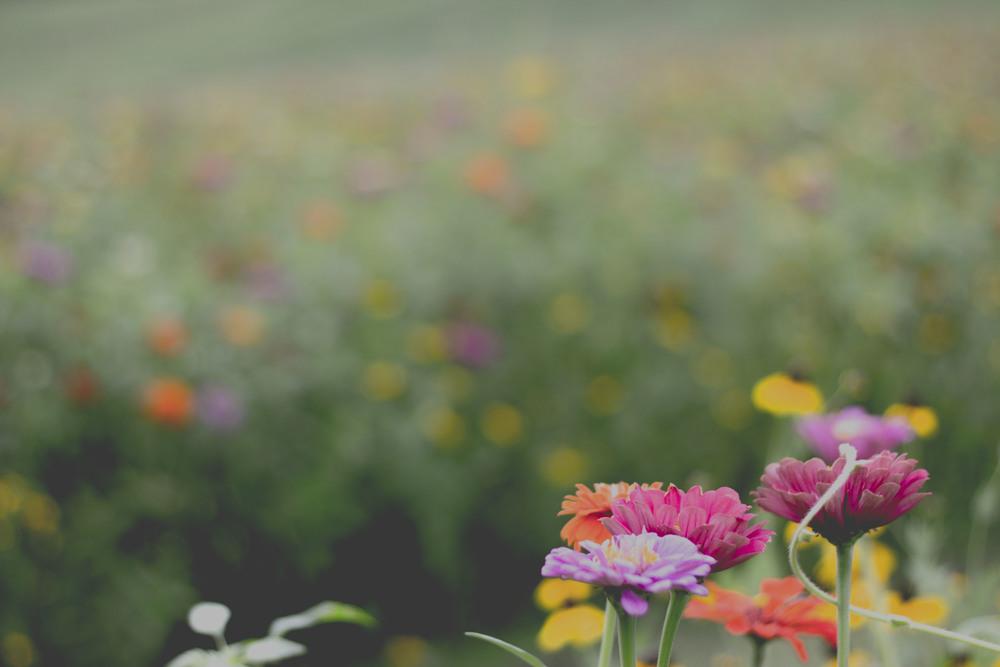 How to Love Yourself Better | Shreveport Boudoir, Beauty, & Wedding Photographer | Bossier Boudoir & Beauty Photographer | Louisiana Boudoir, Beauty, & Wedding Photographer
