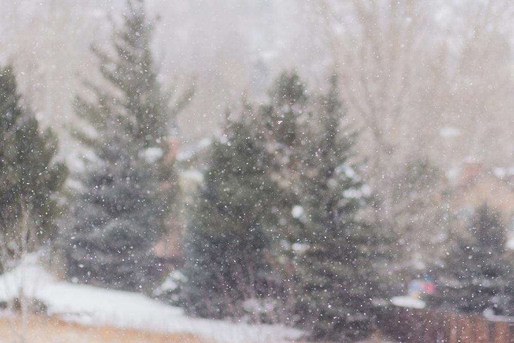Magnolia Grace Photography | Shreveport Boudoir, Beauty, & Wedding Photographer | Bossier Boudoir, Beauty, & Wedding Photographer | What is Your Favorite Christmas Tradition?