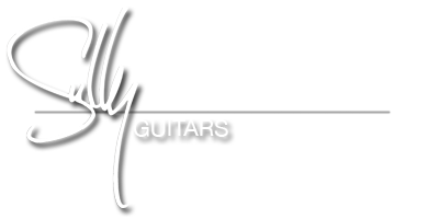 Sully Guitars