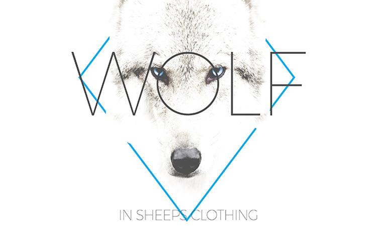 wolfinsheepsclothing.jpg