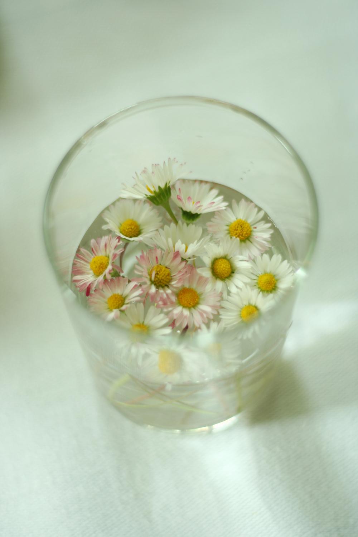 morningprojectsflowers.jpg