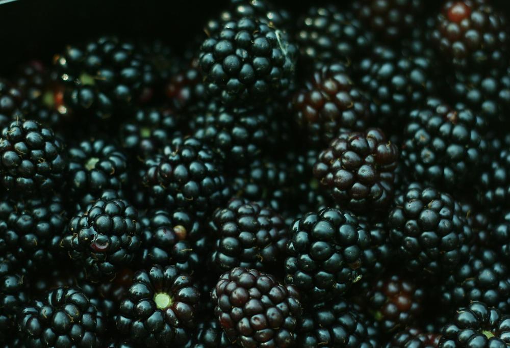 morningprojectsblackberries2.png
