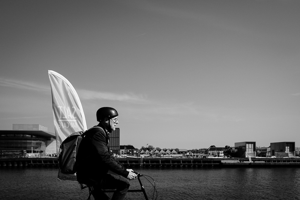 Copenhagen Waterfront Bicyclist