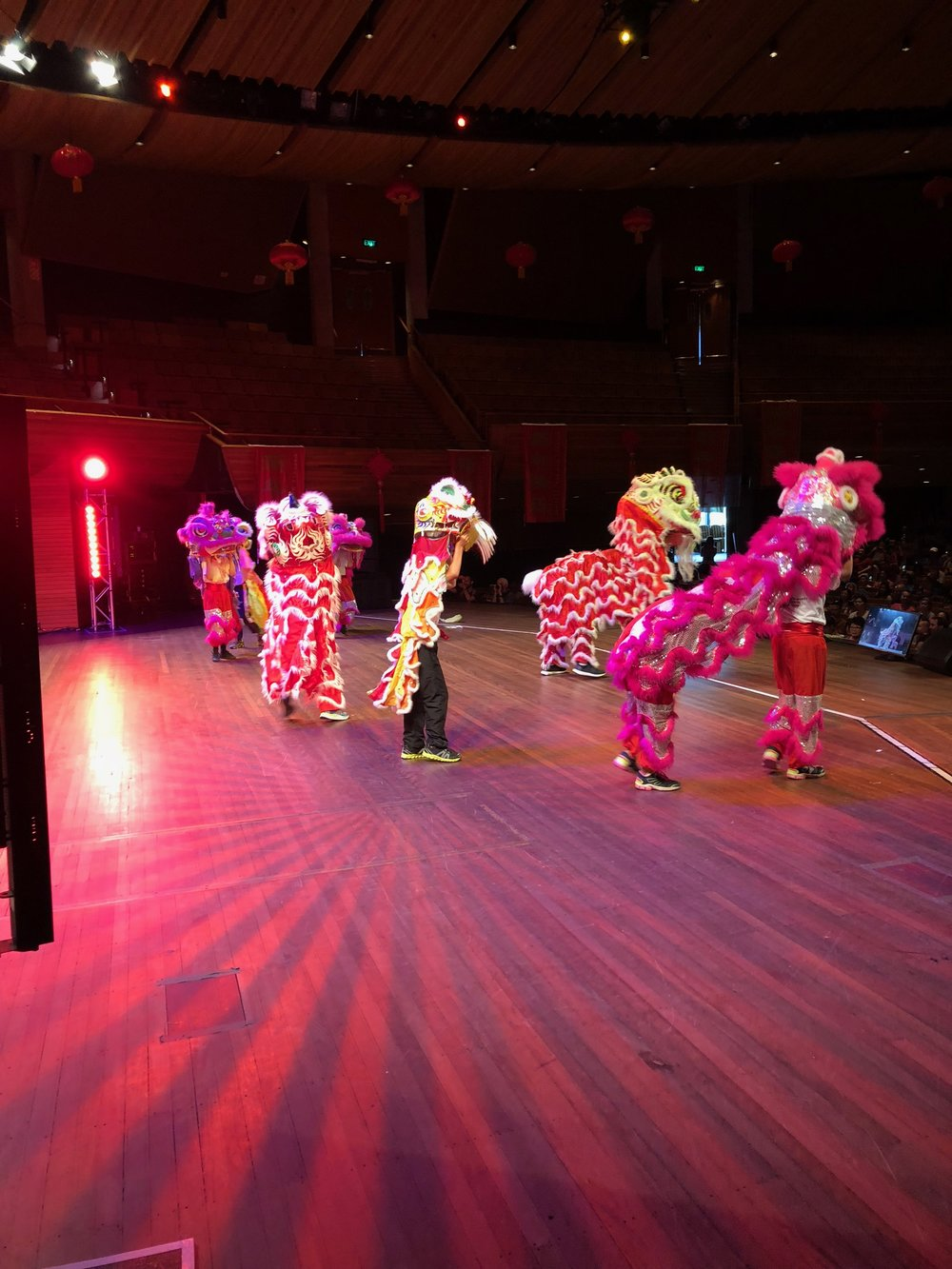 Lion Dance group.JPG