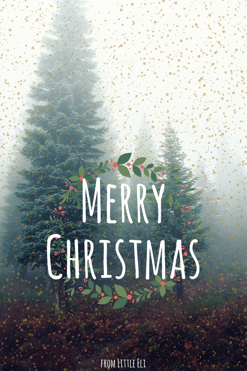 Merry Christmas - From Little Eli