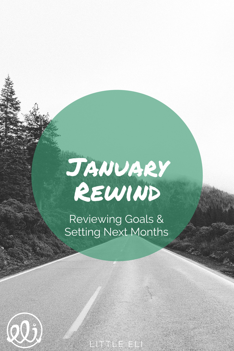 January Rewind - Goal Setting - Little Eli