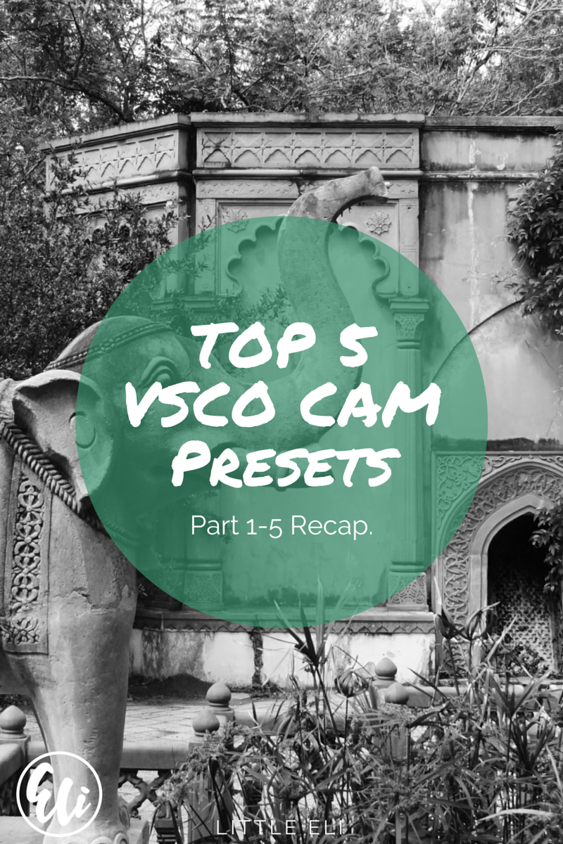Top 5 VSCO Cam Presets. Part 1-5 Round Up - Little Eli
