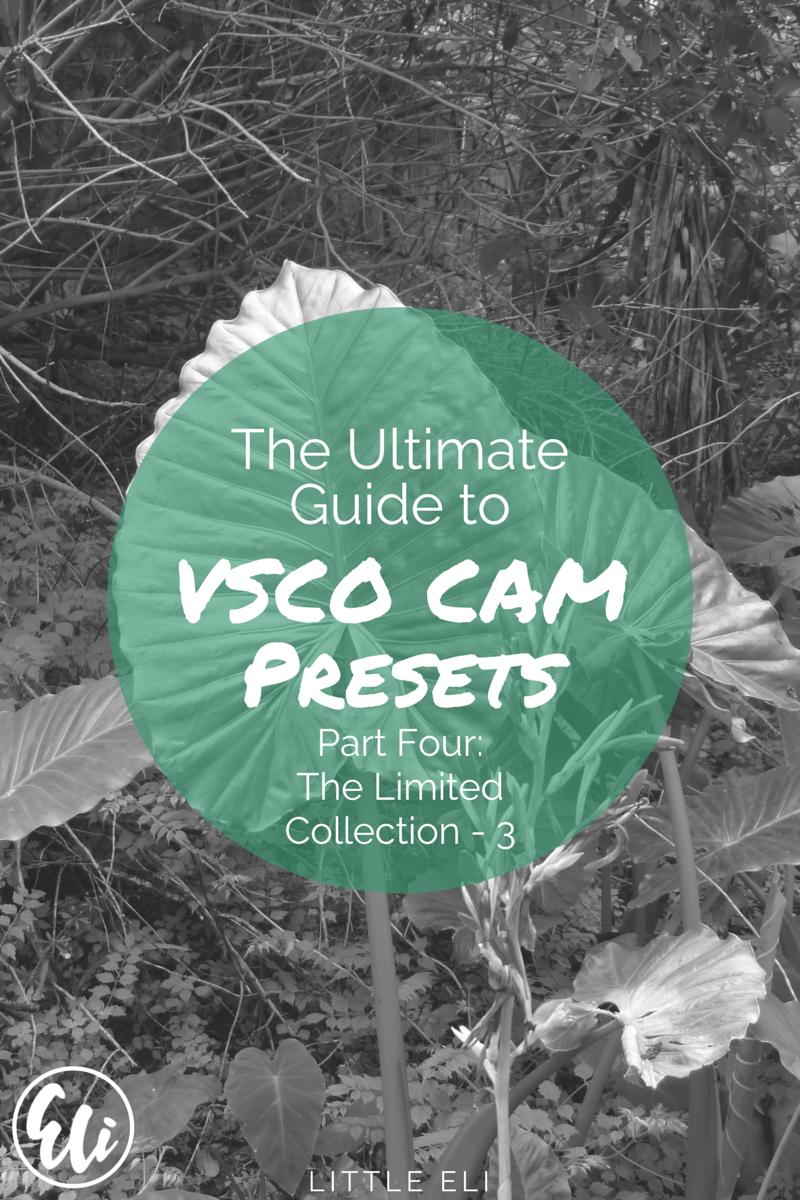 The Ultimate VSCO Cam Guide (PART FOUR) - Little Eli