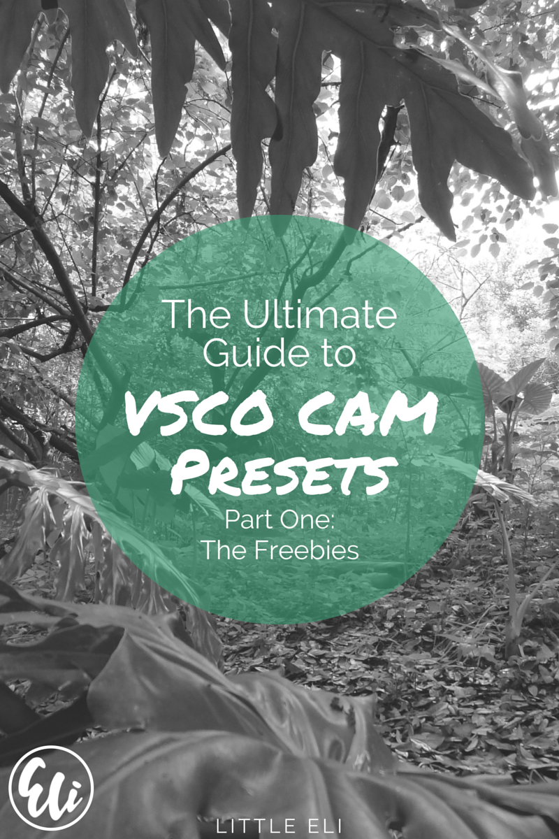 The Ultimate VSCO Cam Guide - Part One: Freebies - Little Eli