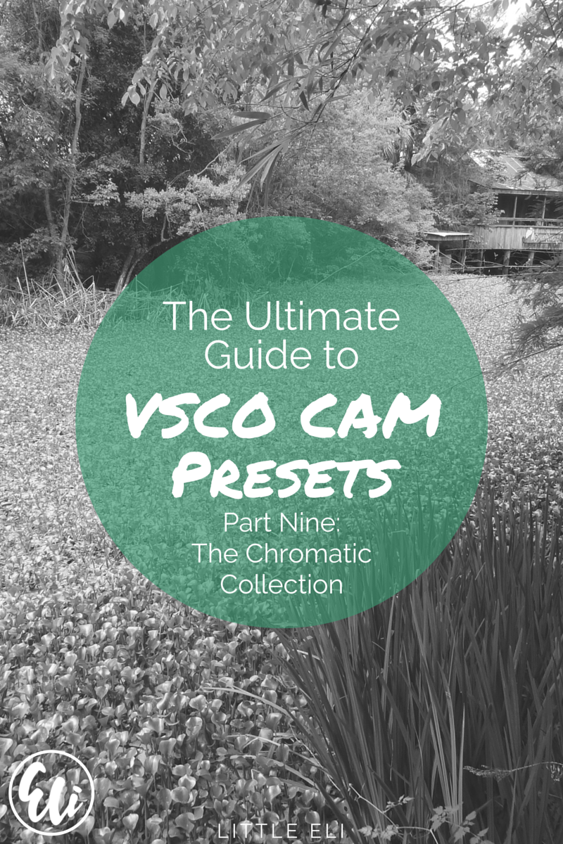 Part Nine of the Ultimate VSCO Cam Review - The Chromatic Collection - Little Eli