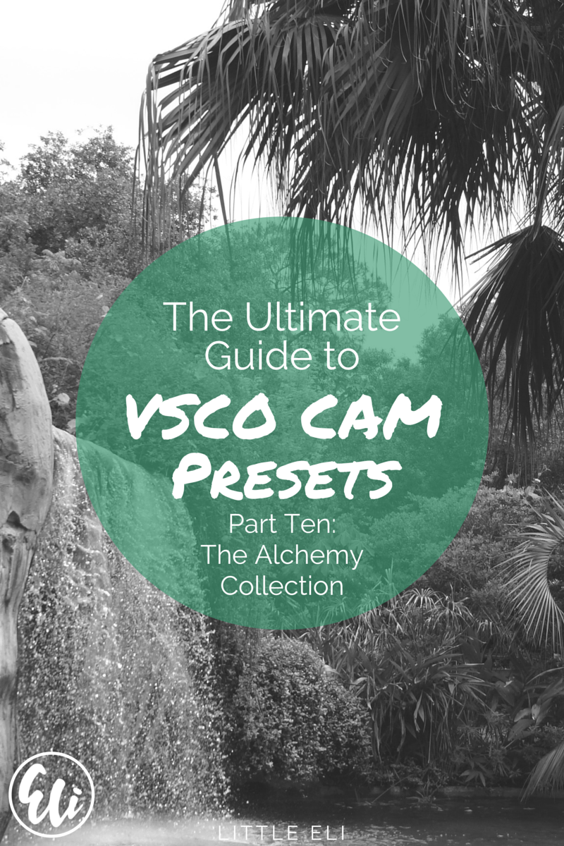 PART TEN: The Alchemy Collection. VSCO Cam Ultimate Review Series - Little Eli