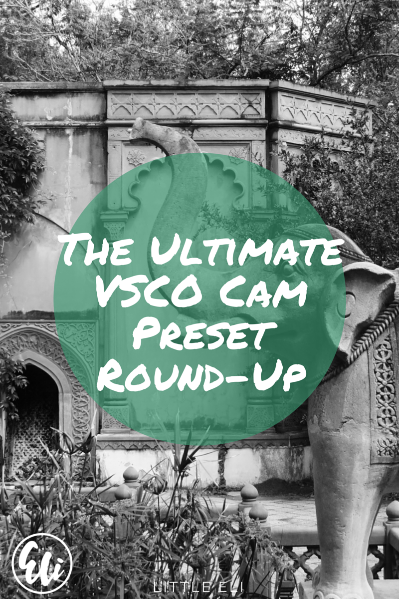 The Ultimate VSCO Cam Preset Recap - Little Eli