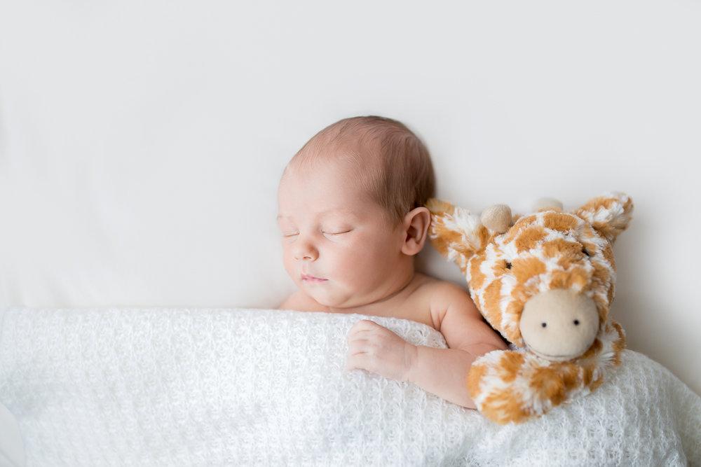 Newborn Reverie Jones-5075-Edit SQAURE.jpg
