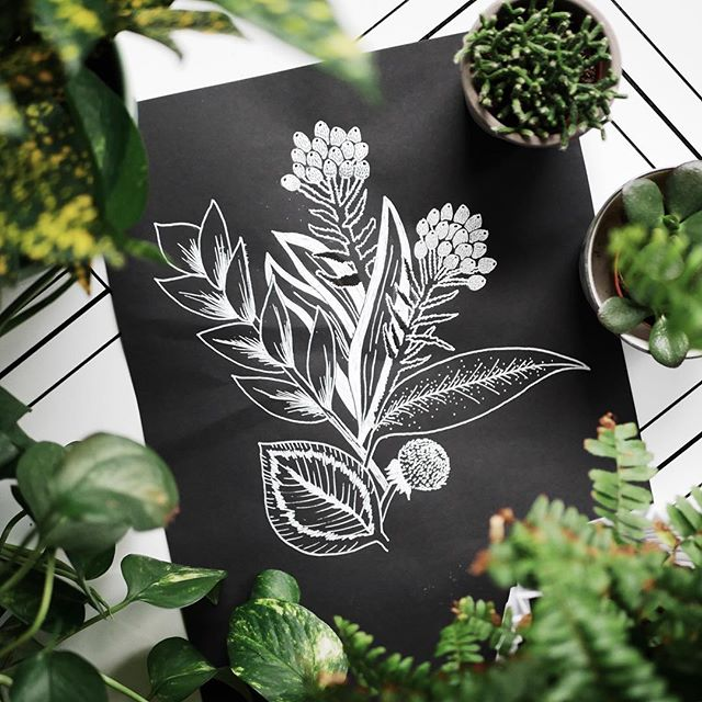 #ihavethisthingwithplants 🌿✨ catching up on #inktober2018 with a #botanicaldrawing night last night! out of practice but still so fun. #inktober #botanicalillustration #botanicalbouquet #zzplant #posca #poscapens #illustration #sketch #womenwhodraw #createdtoday #womenofillustration