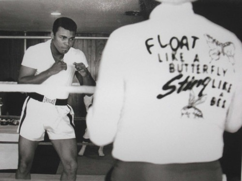 Ali Float Like a Butterfly, Miami, 1965