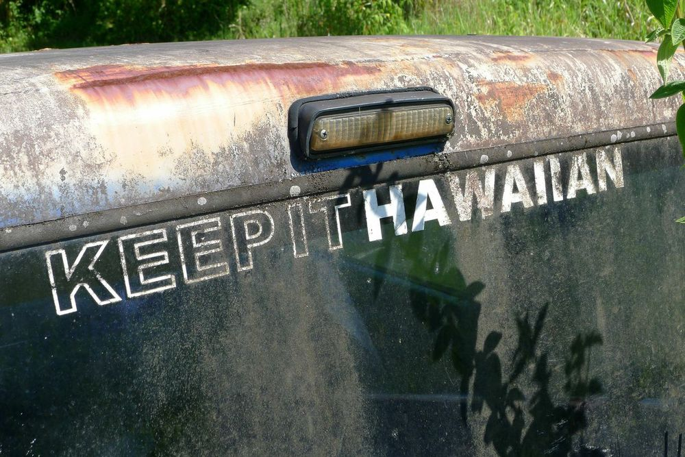 "Keep it Hawaiian 20"" x 30"""