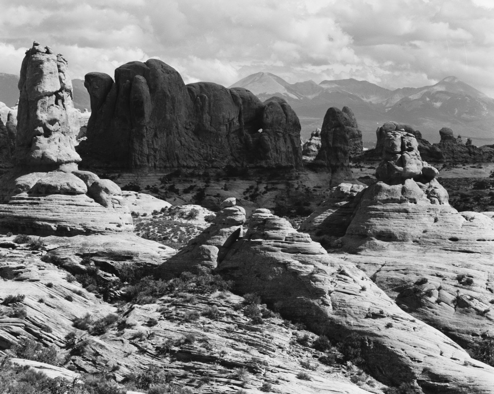 13530- Arches National Park