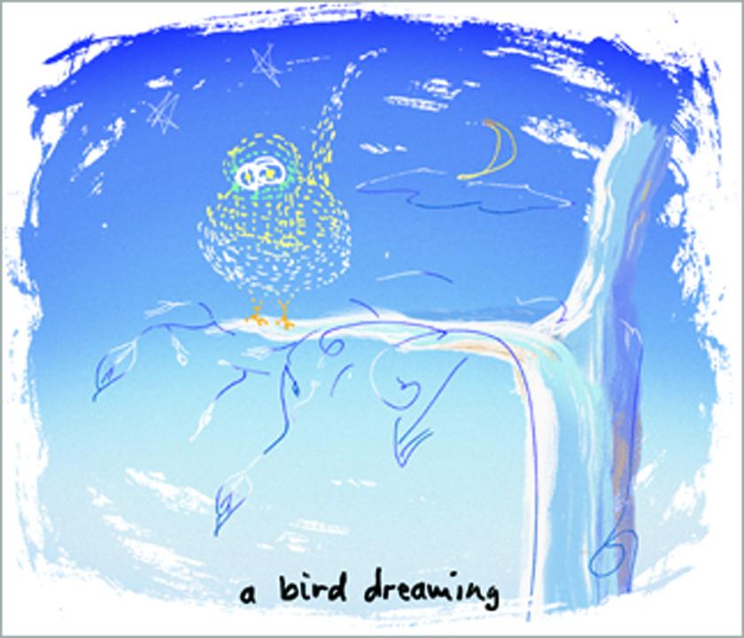 "A Bird Dreaming 9.75"" x 11.5"""