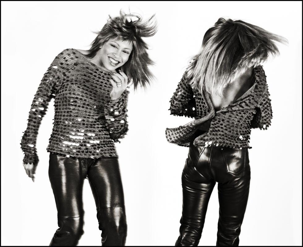 Tina Turner Diptych (Stroke) 1981