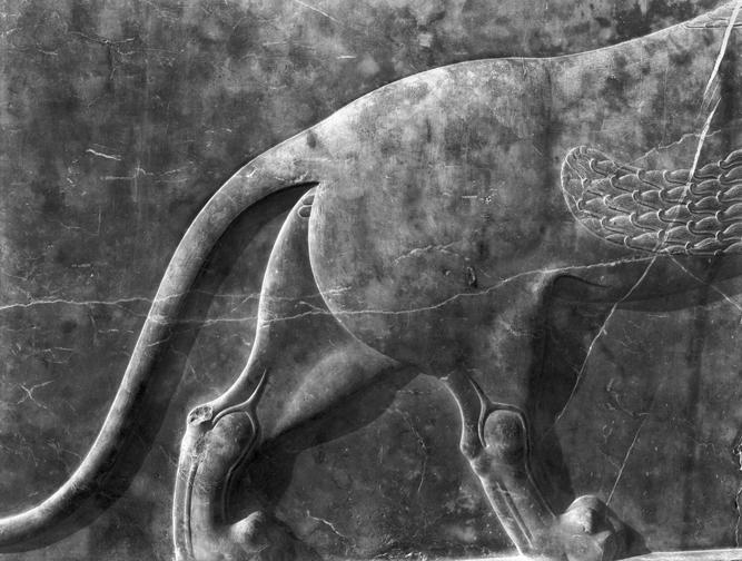 765902 Persepolis
