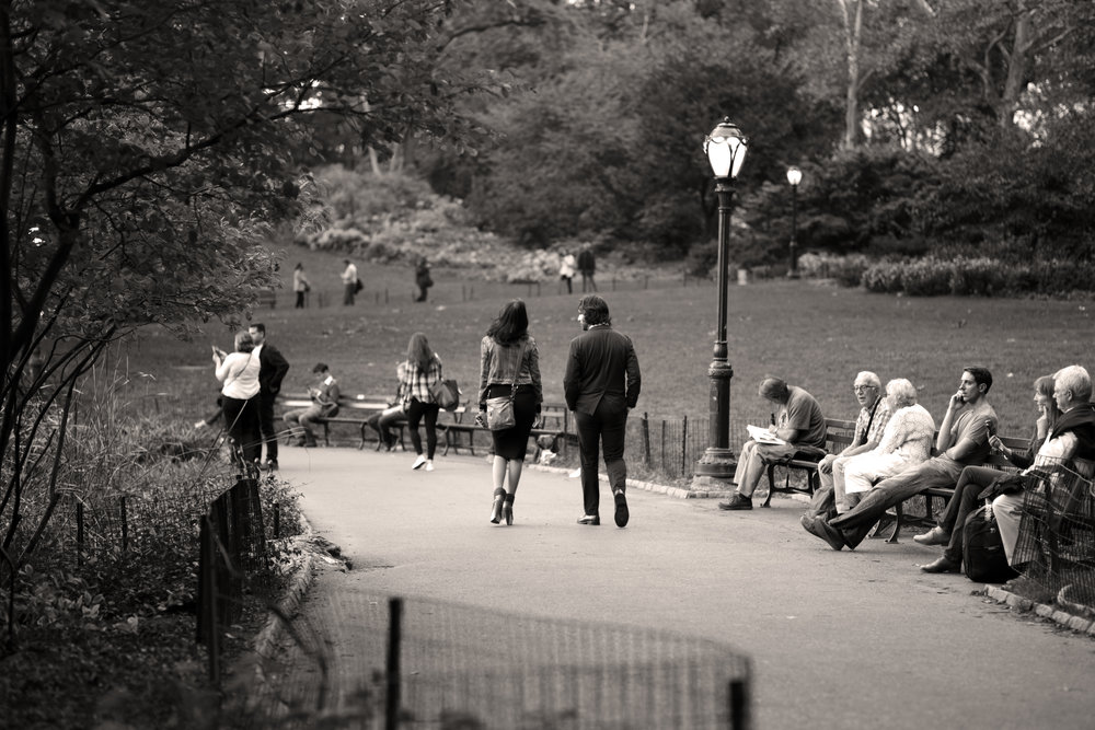 A Couple Alone in Central Park