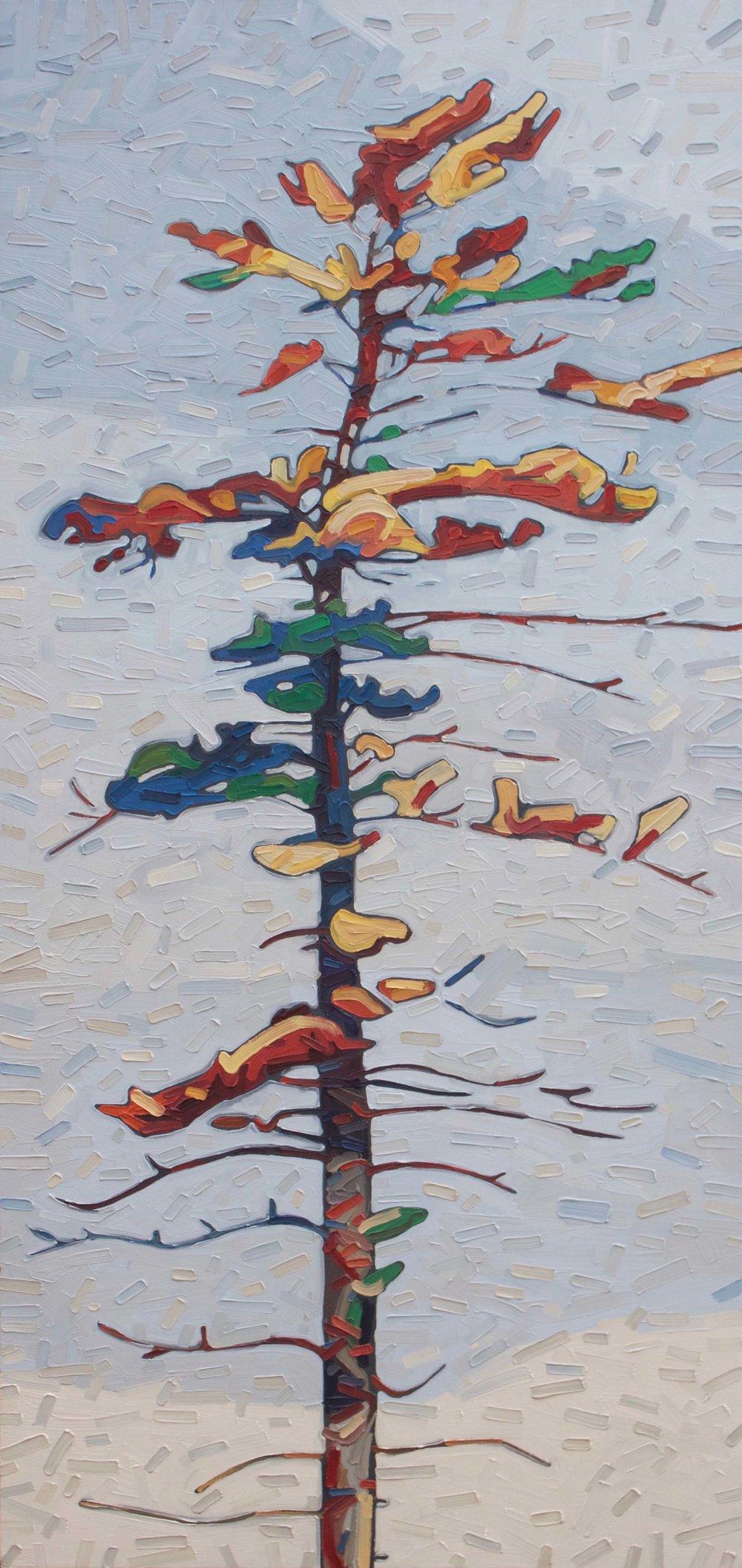 """Wolf Lake Pine - 64""""x30"""""""