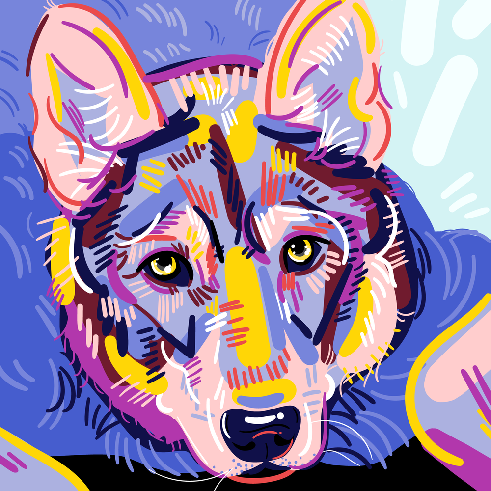 wolfdogpancake.png