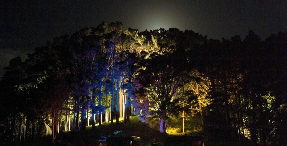 RESIDENTIAL LANDSCAPE& GARDEN LIGHTING