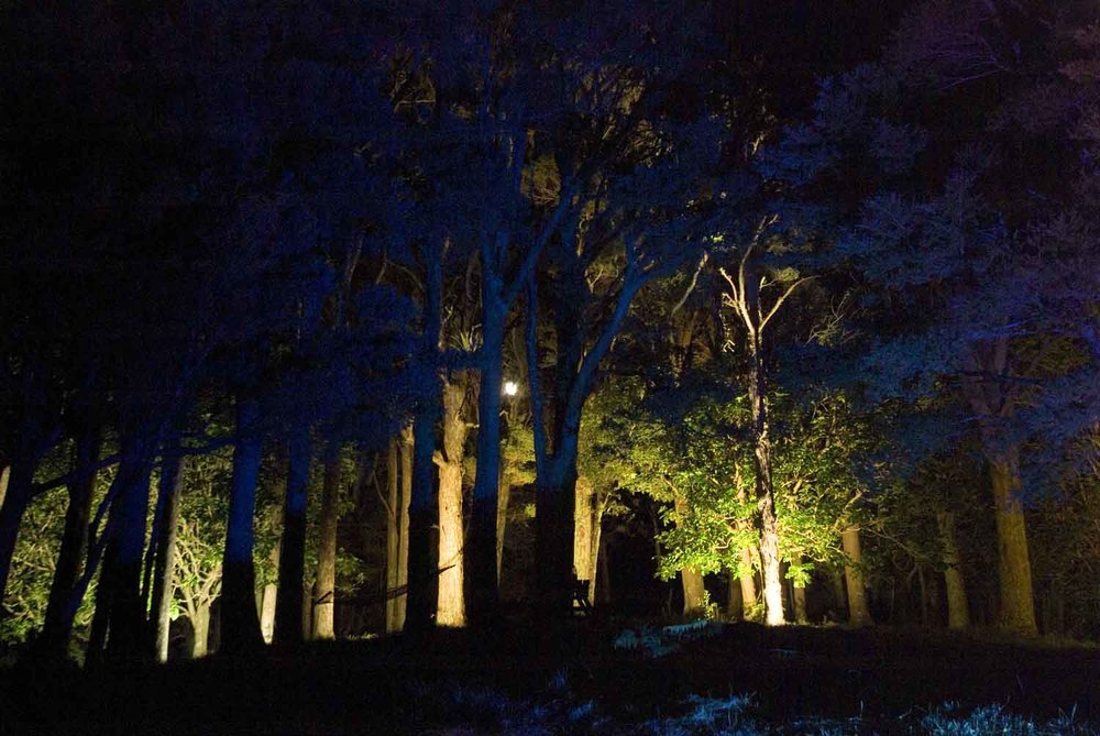 Landscape Lighting design_Insight Light_NZ #13 Totata.jpg