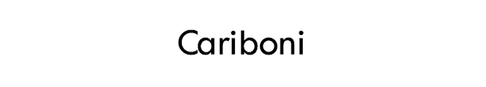 Cariboni group , born in 1908 and leader in the public illumination and functional urban design field, is composed by  Cariboni Lite e Fivep  (and, in addition to them, their foreign branches:  Cariboni France, Cariboni Iberica, Cariboni Illuiminacao and, since 2003, T.I.L.C in Tunisie ). All the group's companies are specialised in the production and commercialisation of illumination fixtures.  Cariboni Lite, Cariboni Illuminazione until 2003, is born at the beginning of the Seventies, after the incorporation and the transformation of F.I.R. FABBRICA ITALIANA RIFLETTORI GARIBOLDI. A flexible and efficient work group with an own engineering structure, for a company that normally co-operates with the most famous marks of the lighting industry. FIVEP takes its origin in the fusion of three great leading companies: FIDENZA VETRARIA, POLLICE ILLUMINAZIONE, SOLDI & SCATI. The merger of these three great conceptions, together with the will to continue the work launched years ago, guarantees today a leading position in the public lighting market.  The decal presence of Cariboni Group on illumination market enabled the society to develop competence and know-how, which brought the firm to a leader position, as far as the production of ad hoc illuminating solutions is concerned. The wide range of products specially designed for residential, architectural or functional lighting, offers a large choice to any professional designer who uses artificial light to give life and a special shape to any space, all this by complying with actual norms.