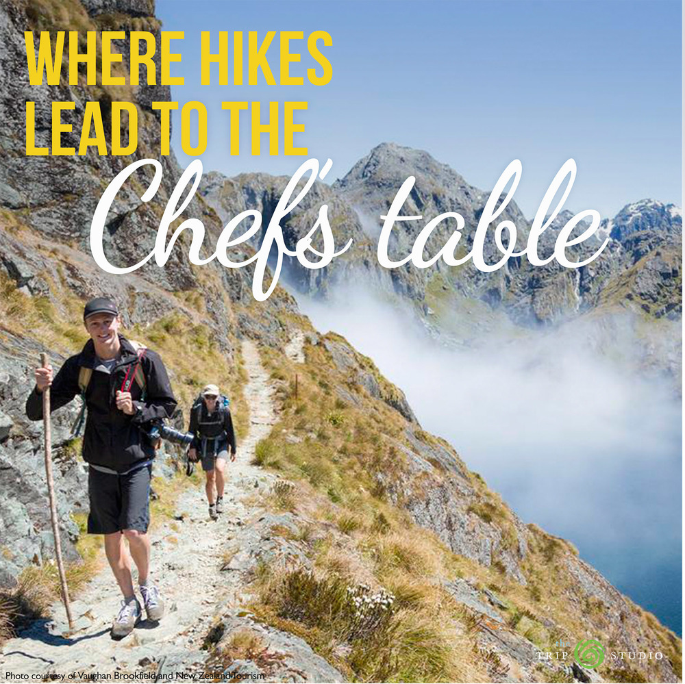 NZ_hikes to chefs_1-22-16.jpg