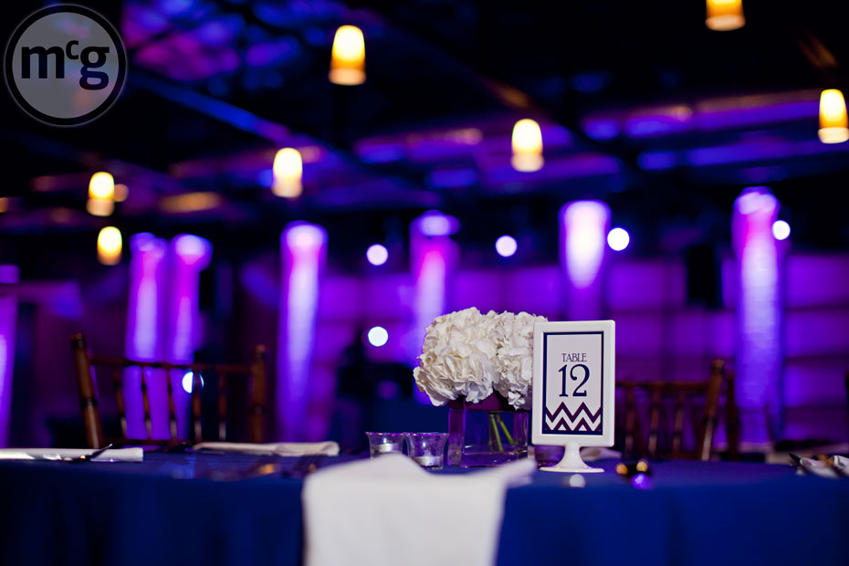 Edison's Dallas Reception Purple Uplighting