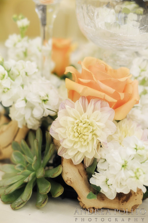 Ivory Peach Succulent Wedding Tablescape