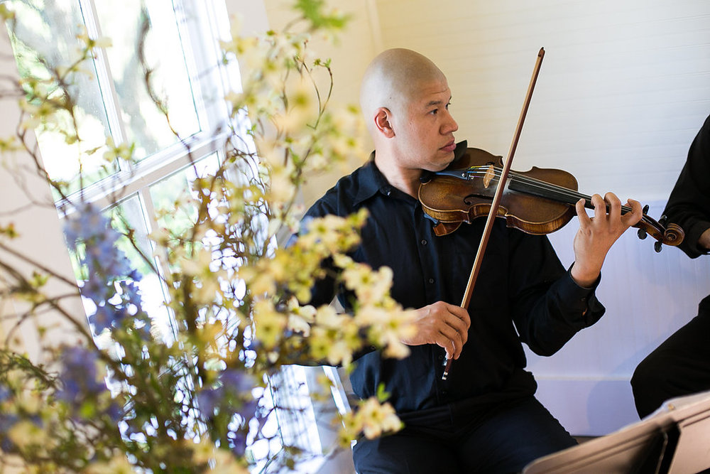 Anthony Chen, Terra Vista Strings violinist