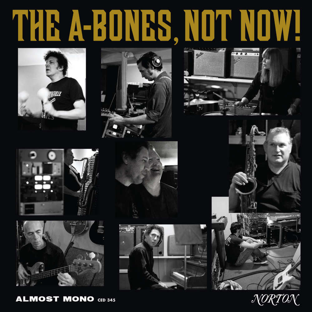 The A-Bones - Not Now LP/CD cover