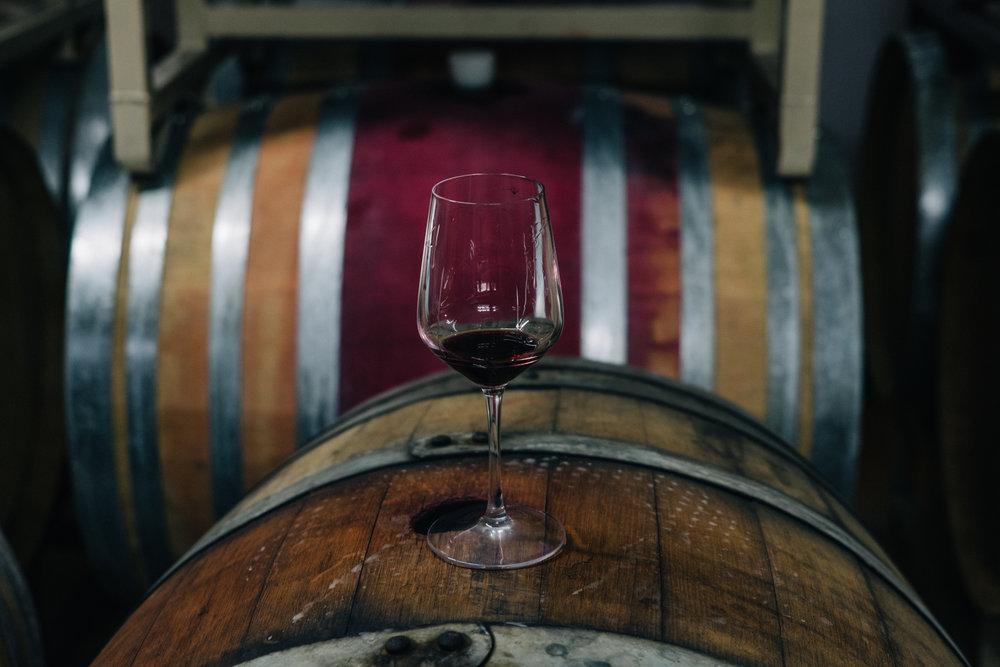 vin-4.jpg