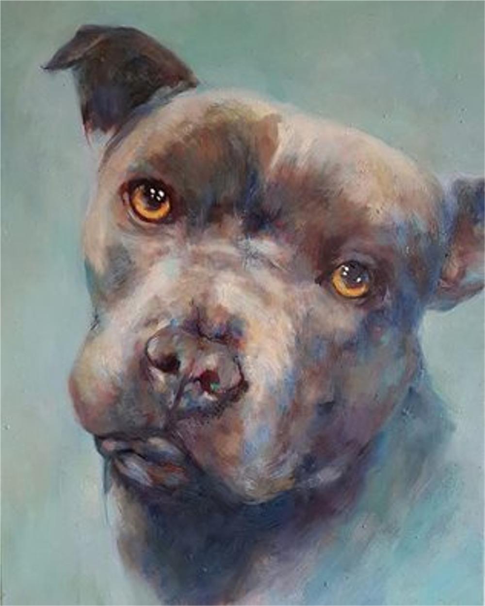 oil painting staffordshire bull terrier by sue gardner.jpg