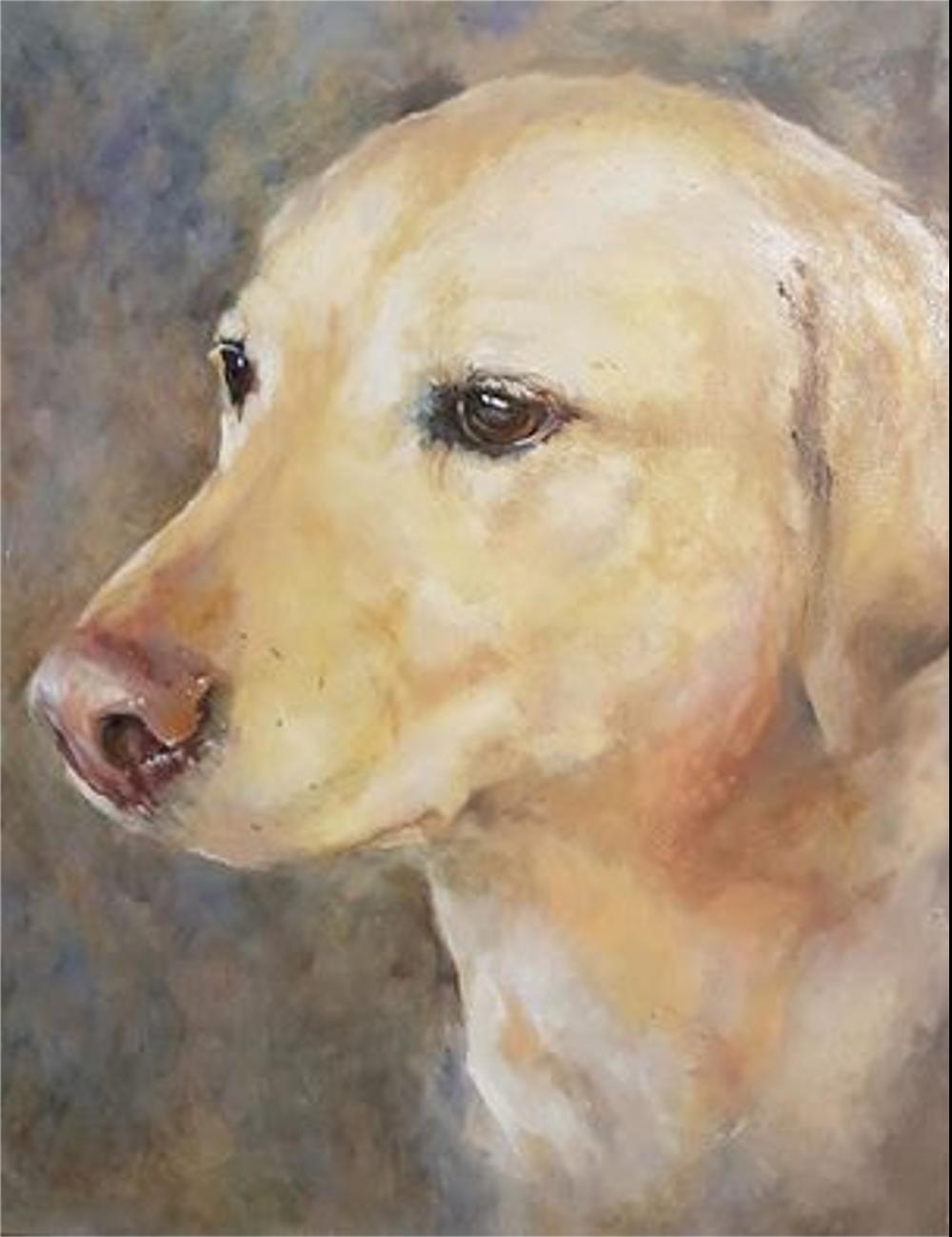 yellow labrador oil portrait.jpg