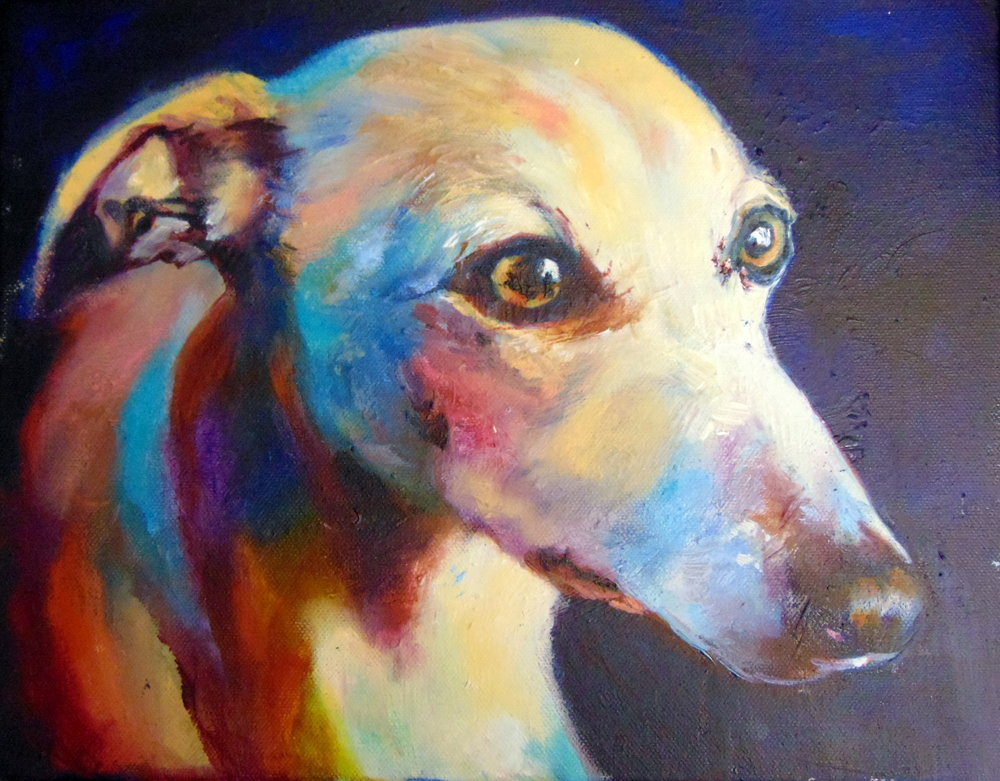 whippet oil sketch sue gardner.jpg