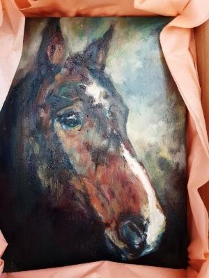 horse portrait in oils commission sue gardner 2018 (1).jpg