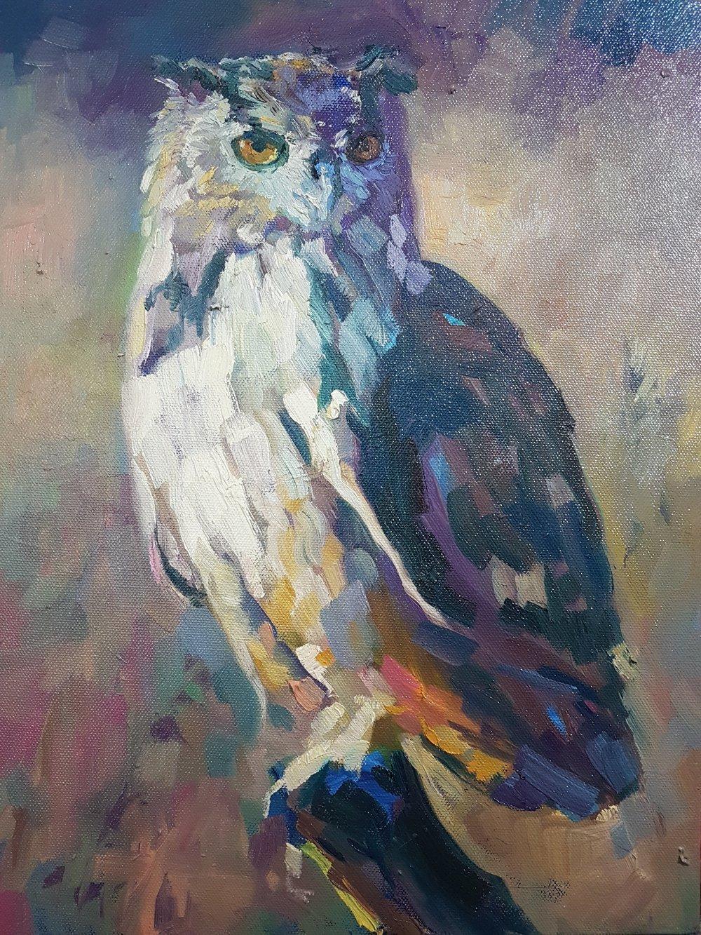 eagle owl wildlife bird oil painting sue gardner.jpg